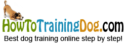 HowToTrainingDog.com